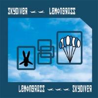 Skydiverの画像