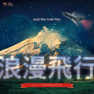 浪漫飛行 〜ELECTORO FUNK MIX〜の画像