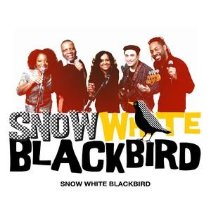 Snow White Blackbirdの画像